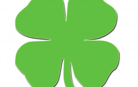 Fun Things to do on St.Patricks Day