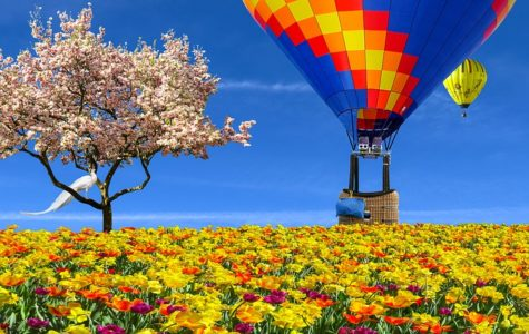 Spring Traveling