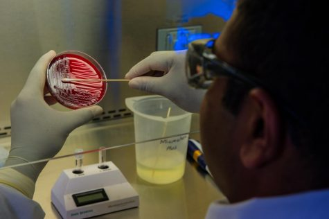 A microbiologist completes a blood culture test in a lab.