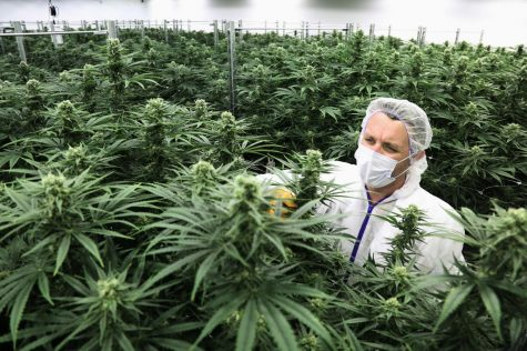 NJ's Recent Legalization of Recreational Marijuana Use