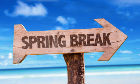 "The Ever-Changing Definition of ""A New Normal"" and How Spring Break Has Shaped It"